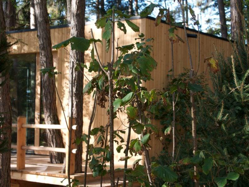 Adler Lodge Ritten - Sauna
