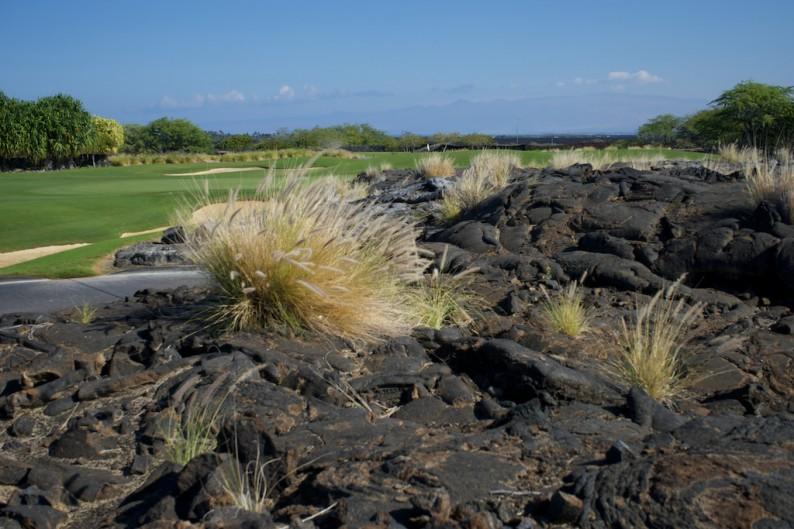 Big Island - Kona - Hulaila Golfplatz (2)