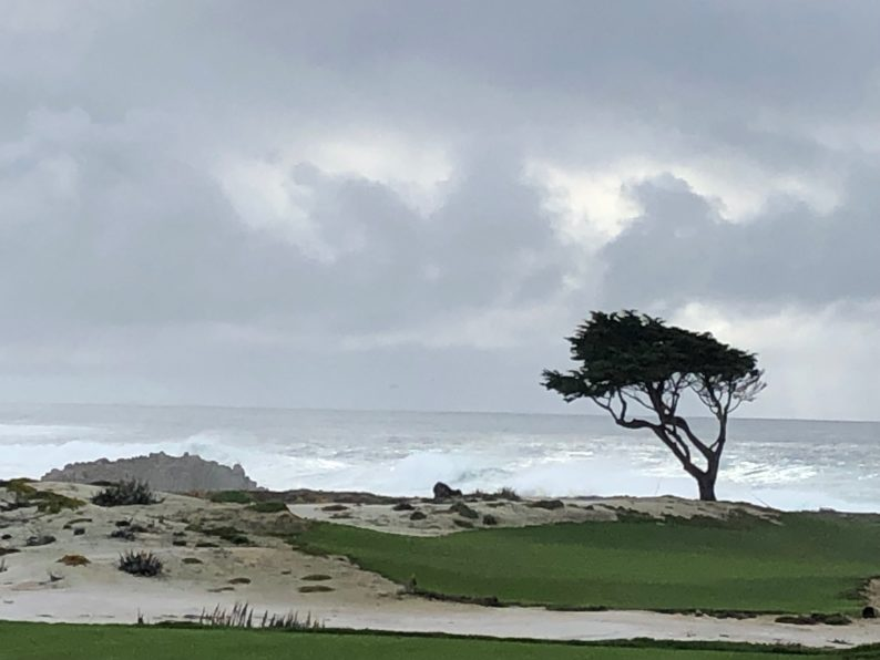 17 Mile Drive - Carmel by the Sea